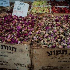 DSC 8818 290x290 Tel Aviv   gdzie zjeść i co zobaczyć