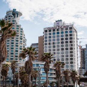 DSC 8940 290x290 Tel Aviv   gdzie zjeść i co zobaczyć